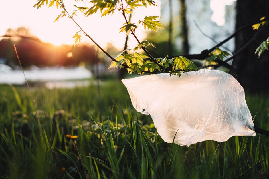 oxo biodegradable fragments plastique