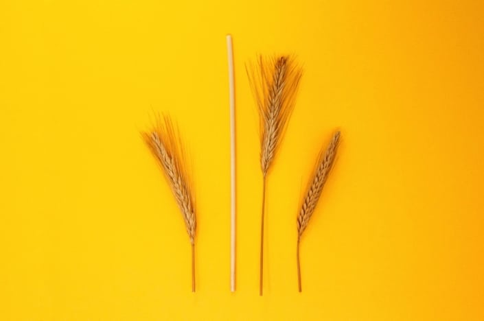Pailles en paille blé