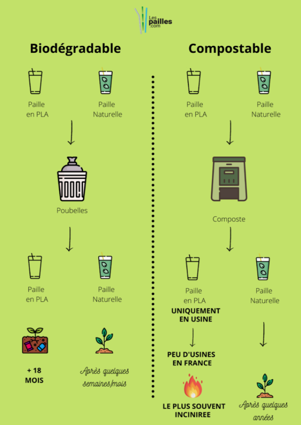 infographie compostable biodegradable