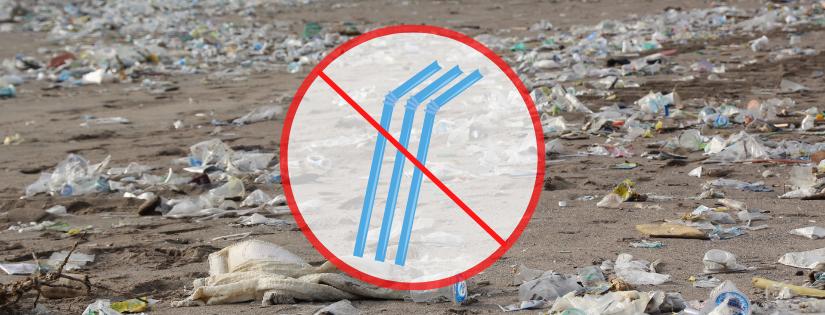 Interdiction des pailles plastiques france