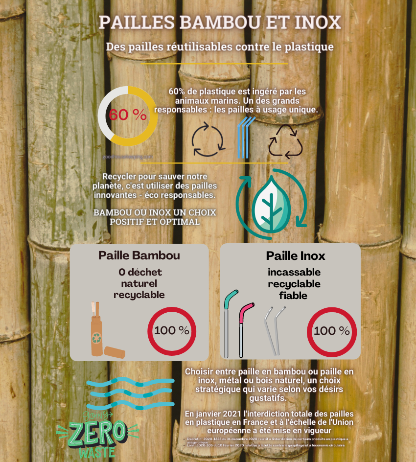 infographie paille inox et bambou
