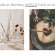 paille bambou ou paille inox