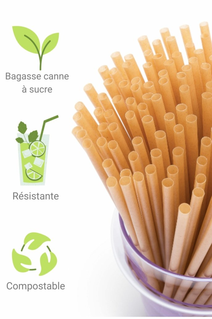 Paille bagasse canne a sucre naturelle biodegradable
