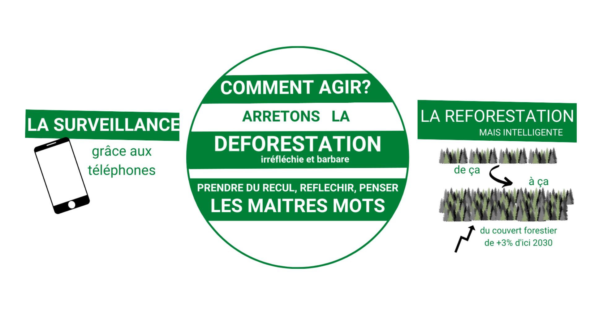 Comment agir contre la deforestation